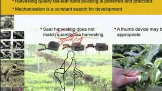 Mod-09 Lec-39 Humanising Design :Design And Human Compatibility, Comfort And Adaptability Aspects