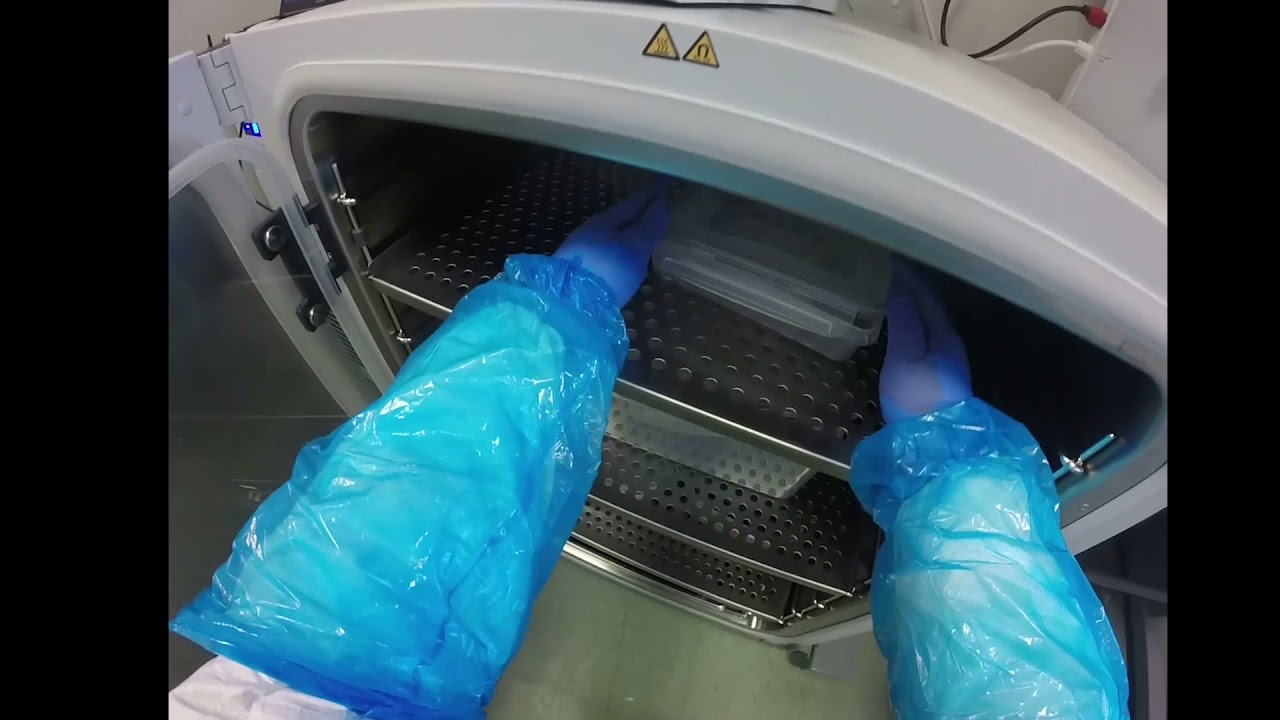 Video Thumbnail: Faculty of MHLS- Going Viral: Researching viruses during a pandemic