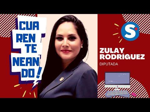 Diputada Zulay Rodríguez califica de egoísta petición de MIAMBIENTE.