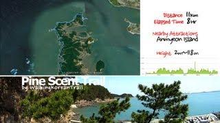Taean-gun South Korea  city photos : trailer_Walking Korean Trail_Pine Scent Trail(태안 둘레길_솔향기길 1코스)