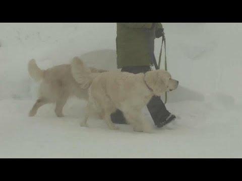 Γερμανία – Αυστρία: Χάος από το χιόνι