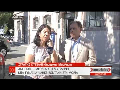 Με 250 εκτός καταυλισμού συνεχίζεται η αποσυμφόρηση στη Μόρια | 30/09/2019 | ΕΡΤ
