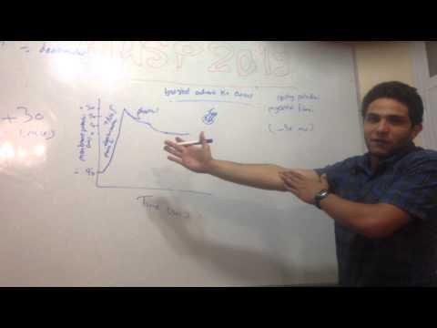 Myocardial Action Potential