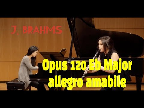 See video J. Brahms Clarinet Sonata in E-flat major. Op. 120, No. 2