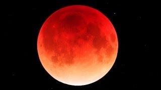 『赤い満月』と『夜桜』に酔える! 4月4日は『月食花見』!次は17年後!