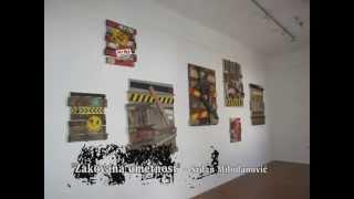 Noć muzeja 2012 - Fotografije