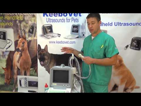 KX2600KV Veterinary Portable Ultrasound Machine Introduction