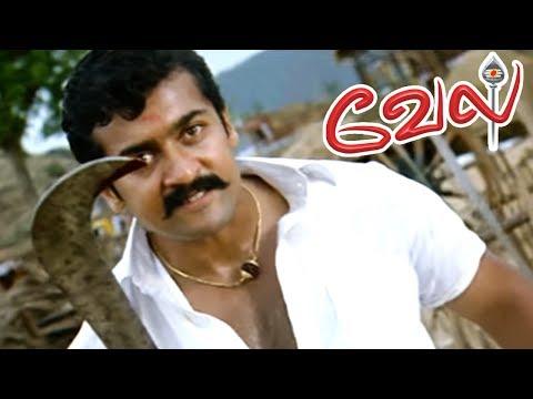Video Vel | Vel Movie | Vel Movie scenes | Suriya Mass Intro | Surya Mass fight Scene | Surya Mass Scene download in MP3, 3GP, MP4, WEBM, AVI, FLV January 2017