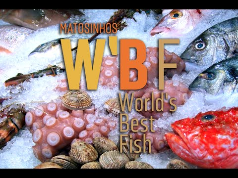 Vídeo World's Best Fish