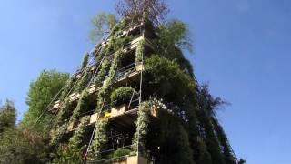 #707 Chelsea Flower Show 2012 - Der Turm im magischen Garten Teil 2