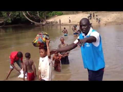 UNHCR's Dr. Paul Spiegel on the Border of CAR  and Cameroon