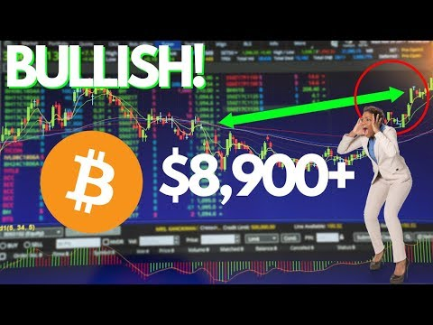 Bitcoin FOMO Is REAL! Cryptocurrency Market BULLISH, Cardano, Twitter Coin?