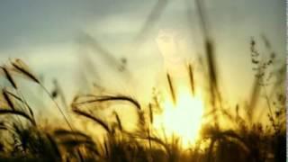 Video Rio Febrian - Tiada Kata Berpisah MP3, 3GP, MP4, WEBM, AVI, FLV Juli 2018