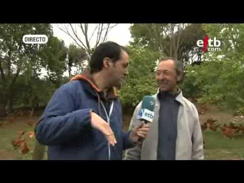 luis Arzoz, Euskadi directo, pollos lumagorri en Campezo-Kanpezu.mp4