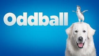 Nonton Oddball Y Sus Ping  Inos   Trailer 2 Film Subtitle Indonesia Streaming Movie Download