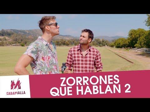 Zorrones Que Hablan 2