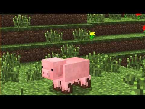 【choco mana】Minecraft 小豬豬生態紀錄片-1