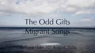 Video The Odd Gifts – Migrant Songs (Teaser)
