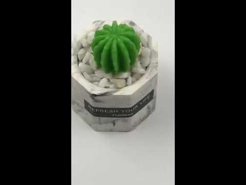 3864-DIY多肉手工香皂大理石盆擴香石 組裝步驟