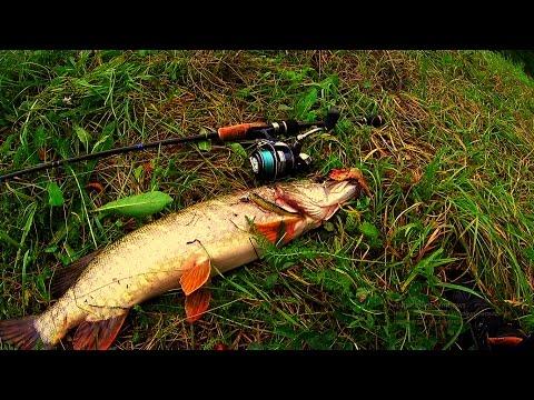 рыбалка на спиннинг осенью воблером