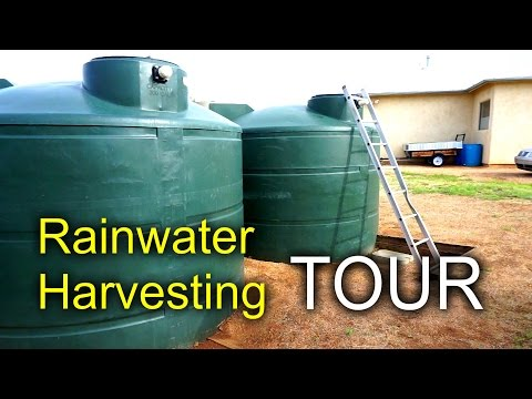 Creating a Rainwater Harvesting System