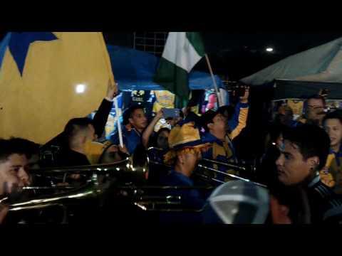 Libres y Lokos.- Celebración semifinal 12/3/2016 - Libres y Lokos - Tigres
