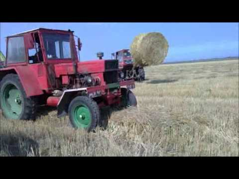 Strawbaling Romania 2011