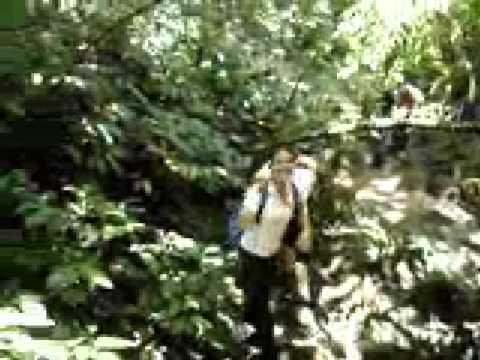Fazendo Trilha em Tapiraí (Cachoeira do Chá) com a Turma da Melampus (08/12/07)