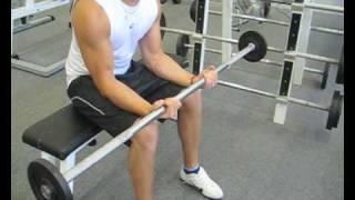 Videoanleitung zur Übung Unterarmbeugen mit einer Langhantel. Diese Übung trainiert die Unterarmmuskulatur. Weitere Übungen und alles rund um das Thema Fitness auf: http://www.wikifit.de
