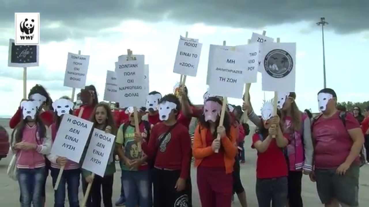 Διαμαρτυρία ενάντια στις φόλες, 4-5 Μαΐου 2015