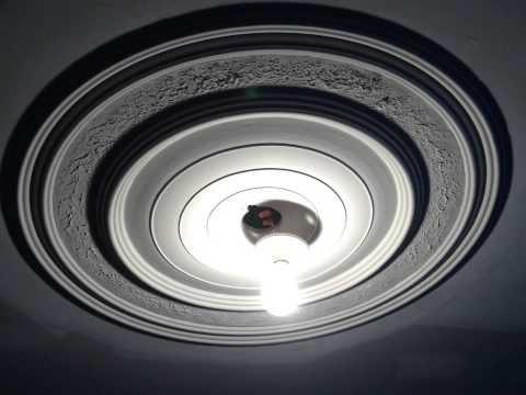 Rosace de plafond en pl tre plaster ceiling medallion for Rosace de plafond