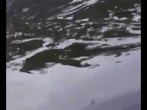 Магадан, Арманский перевал - июнь 2008 - описание спуска (видео)