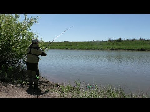 Рыбалка. ЛЕЩ уважает эту НАЖИВКУ. Ловля леща летом на реке 2018 (видео)