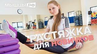 Уроки гибкости для начинающих! Дома и в зале! Лена Романова