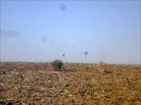 CACERIA AL PASO 2011-video