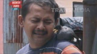 Video INDONESIA PUNYA CERITA 18 NOV 2015 - Kesetiaan Burung jalak MP3, 3GP, MP4, WEBM, AVI, FLV Agustus 2019