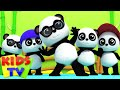 Bao Panda | Five Little Pandas | 3D Nursery Rhymes From Kids Tv