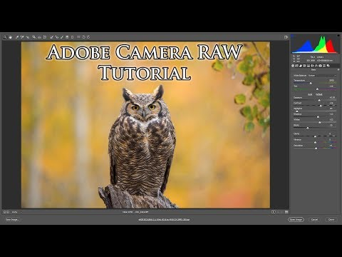 Adobe Camera RAW - Tutorial