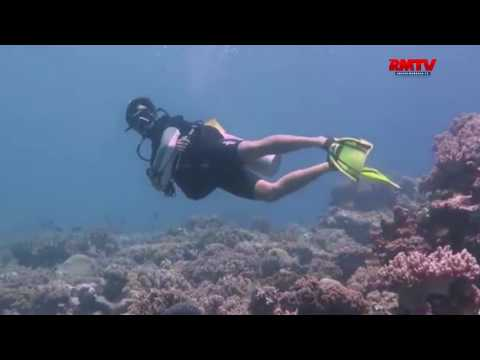Kaya Flora Fauna, Indonesia Destinasi Diving Terbaik 2017
