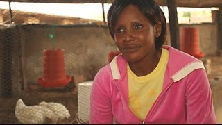 Fortune Sazola never thought she'd run a successful agribusiness until she enrolled in Zimbabwe:Works. Learn how the initiative,...