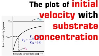 The plot of initial velocity with substrate concentration