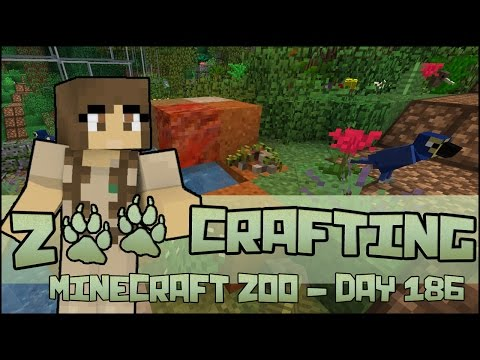 Extremely Bird-Brained Day 🐘 Zoo Crafting: Season 2 - Episode #186