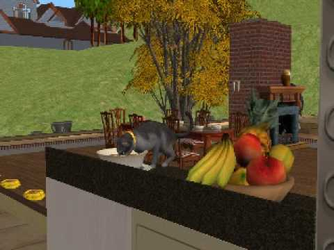 The Sims 2 Pets - the cat eat human's food