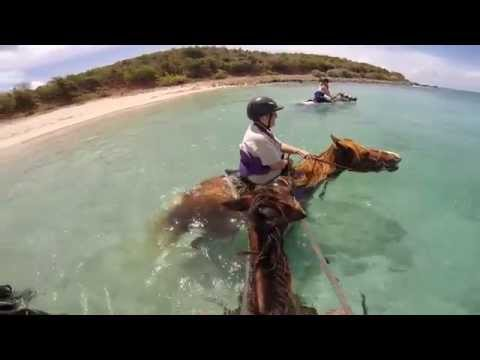 Relaxing in Coco Cay, horseback riding in St Maartin 4/9/2015
