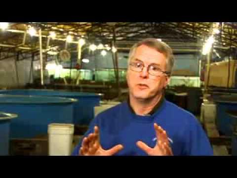Freshwater Farms of Ohio