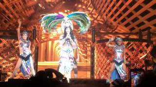 Cher's Woman's World From Her Dressed To Kill Tour At Izod Center