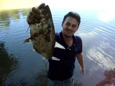 Pesca de Matrinchã no rio Kuluene