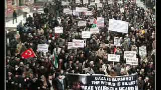 فلسطين   وين الملايين