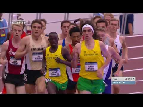 NCAA Indoor Men's 3000 Meters (видео)