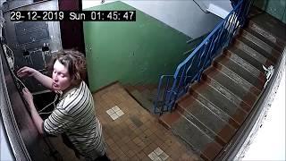 Wesołe życie patologicznych sąsiadów w Rosji